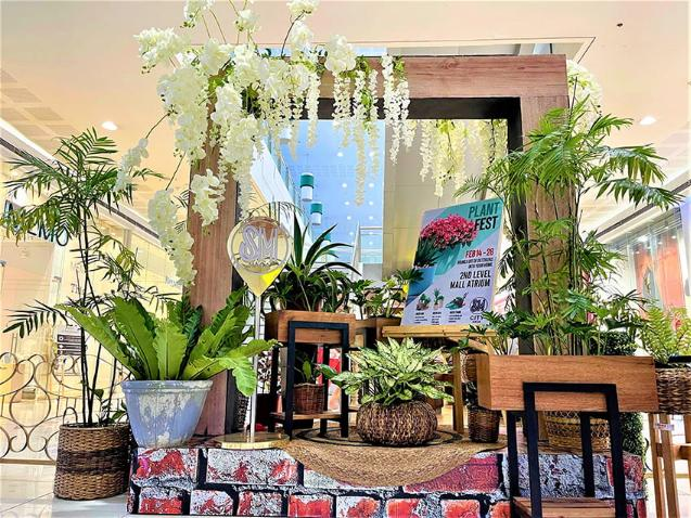 Plant Fest