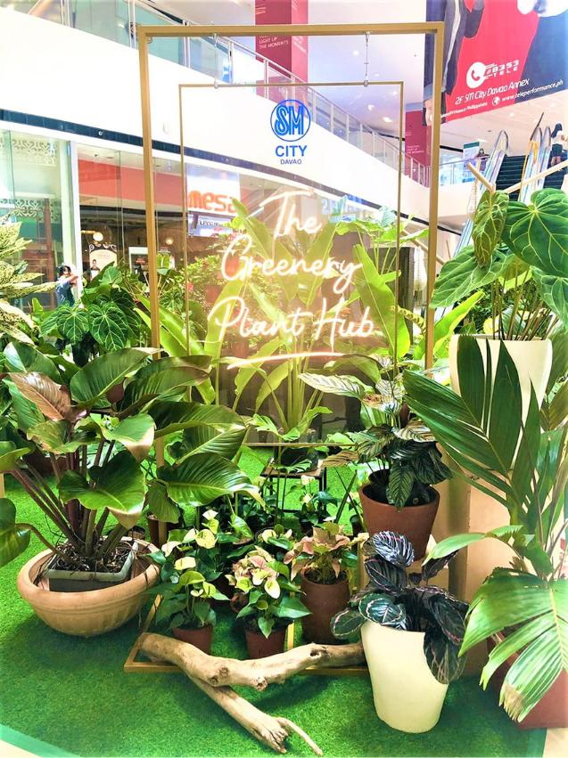 The Greenery Plant Hub