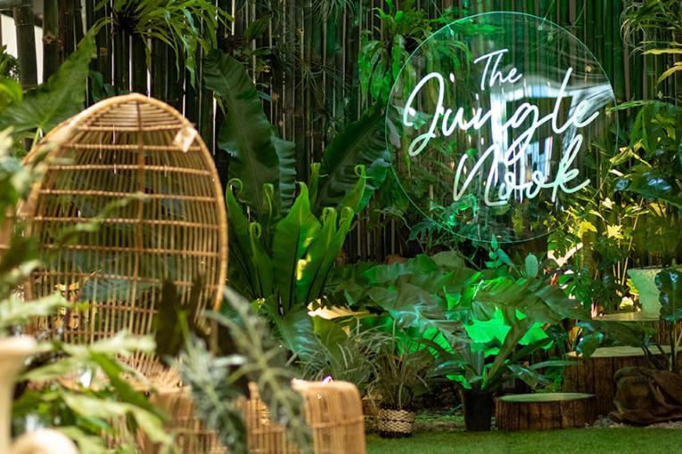 The Jungle Nook